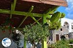 Megalochori Santorini | Cyclades Greece | Photo 16 - Photo GreeceGuide.co.uk