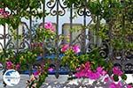 Megalochori Santorini | Cyclades Greece | Photo 20 - Photo GreeceGuide.co.uk
