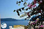 Oia Santorini   Cyclades Greece   Photo 1019 - Photo GreeceGuide.co.uk