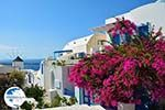 Oia Santorini | Cyclades Greece | Photo 1193 - Photo GreeceGuide.co.uk