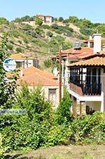 Nikiti and Aghios Nikitas Sithonia | Halkidiki | Greece  Photo 3 - Photo GreeceGuide.co.uk