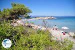 Beaches and nature near Vourvourou | Sithonia Halkidiki | Greece  Photo 13 - Photo GreeceGuide.co.uk