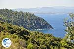 Beaches and nature near Vourvourou | Sithonia Halkidiki | Greece  Photo 35 - Photo GreeceGuide.co.uk