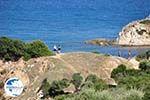 Sarti   Sithonia Halkidiki   Greece  Photo 18 - Photo GreeceGuide.co.uk