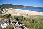 nature Beaches near Sykia and Paralia Sykias | Sithonia Halkidiki | Photo 2 - Photo GreeceGuide.co.uk