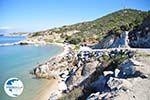 nature Beaches near Sykia and Paralia Sykias | Sithonia Halkidiki | Photo 9 - Photo GreeceGuide.co.uk