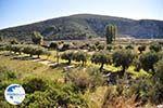 Porto Koufo | Sithonia Halkidiki | Greece  Photo 2 - Photo GreeceGuide.co.uk