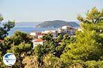 Neos Marmaras | Sithonia Halkidiki | Greece  Photo 8 - Photo GreeceGuide.co.uk