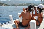 Sivota (Syvota) Thesprotia Epirus | Greece  - Photo 013 - Photo GreeceGuide.co.uk
