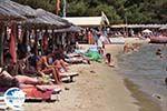 The beach of Koukounaries - Skiathos - Photo GreeceGuide.co.uk