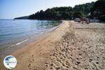 Achladies   Skiathos Sporades   Greece  Photo 3 - Photo GreeceGuide.co.uk