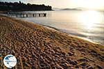 Achladies | Skiathos Sporades | Greece  Photo 11 - Photo GreeceGuide.co.uk
