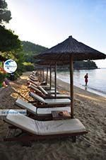Maratha beach near Koukounaries | Skiathos Sporades | Greece  Photo 14 - Photo GreeceGuide.co.uk