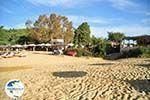 Troulos beach   Skiathos Sporades   Greece  Photo 8 - Photo GreeceGuide.co.uk