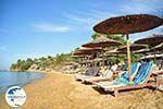 Troulos beach | Skiathos Sporades | Greece  Photo 10 - Photo GreeceGuide.co.uk