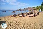 Troulos beach | Skiathos Sporades | Greece  Photo 14 - Photo GreeceGuide.co.uk