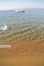 Aghia Paraskevi (Platanias beach) | Skiathos Sporades | Greece  Photo 17 - Photo GreeceGuide.co.uk