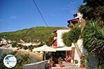 Megali Ammos (Ftelia) | Skiathos Sporades | Greece  Photo 6 - Photo GreeceGuide.co.uk