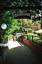 Restaurant Platanos near Profitis Ilias | Skiathos Sporades | Greece  Photo 2 - Photo GreeceGuide.co.uk