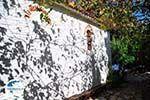 Kastro | Skiathos Sporades | Greece  Photo 39 - Photo GreeceGuide.co.uk