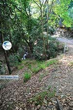 hiking trails near monastery Kechria | Skiathos Sporades | Greece  Photo 2 - Photo GreeceGuide.co.uk