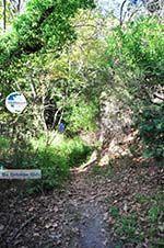 hiking trails near monastery Kechria | Skiathos Sporades | Greece  Photo 5 - Photo GreeceGuide.co.uk