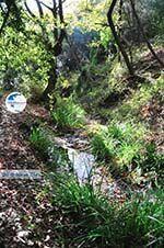 hiking trails near monastery Kechria | Skiathos Sporades | Greece  Photo 18 - Photo GreeceGuide.co.uk