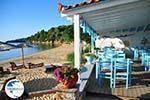 Maniatis Garden Achladies | Skiathos Sporades | Greece  Photo 4 - Photo GreeceGuide.co.uk
