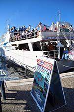 Skiathos town | Skiathos Sporades | Greece  Photo 56 - Photo GreeceGuide.co.uk