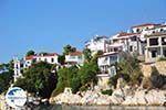 Skiathos town | Skiathos Sporades | Greece  Photo 60 - Photo GreeceGuide.co.uk