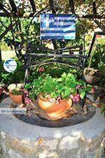 Maniatis Garden Achladies | Skiathos Sporades | Greece  Photo 12 - Photo GreeceGuide.co.uk