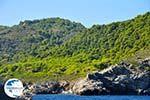 The green eastern coast of Skopelos   Sporades   Greece  Photo 7 - Photo GreeceGuide.co.uk