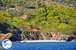 The green eastern coast of Skopelos | Sporades | Greece  Photo 9 - Photo GreeceGuide.co.uk