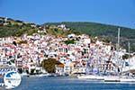 Skopelos town | Sporades | Greece  Photo 4 - Photo GreeceGuide.co.uk