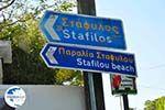 Stafylos | Skopelos Sporades | Greece  Photo 1 - Photo GreeceGuide.co.uk