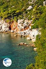Stafylos | Skopelos Sporades | Greece  Photo 3 - Photo GreeceGuide.co.uk