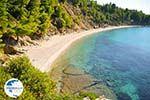 Stafylos   Skopelos Sporades   Greece  Photo 6 - Photo GreeceGuide.co.uk