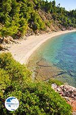 Stafylos   Skopelos Sporades   Greece  Photo 7 - Photo GreeceGuide.co.uk