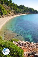 Stafylos | Skopelos Sporades | Greece  Photo 8 - Photo GreeceGuide.co.uk