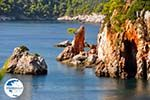 Stafylos | Skopelos Sporades | Greece  Photo 12 - Photo GreeceGuide.co.uk
