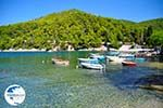 Agnontas | Skopelos Sporades | Greece  Photo 3 - Photo GreeceGuide.co.uk