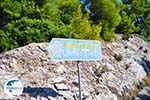 Agnontas | Skopelos Sporades | Greece  Photo 12 - Photo GreeceGuide.co.uk