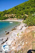 Panormos Skopelos | Sporades | Greece  Photo 12 - Photo GreeceGuide.co.uk