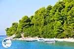 Panormos Skopelos | Sporades | Greece  Photo 13 - Photo GreeceGuide.co.uk