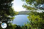 Panormos Skopelos | Sporades | Greece  Photo 16 - Photo GreeceGuide.co.uk