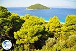 Milia | Skopelos Sporades | Greece  Photo 3 - Photo GreeceGuide.co.uk