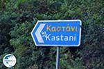 Kastani   Skopelos Sporades   Greece  Photo 1 - Photo GreeceGuide.co.uk