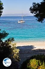 Kastani | Skopelos Sporades | Greece  Photo 2 - Photo GreeceGuide.co.uk