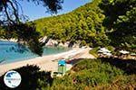 Kastani   Skopelos Sporades   Greece  Photo 6 - Photo GreeceGuide.co.uk
