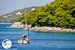 Kastani | Skopelos Sporades | Greece  Photo 9 - Photo GreeceGuide.co.uk